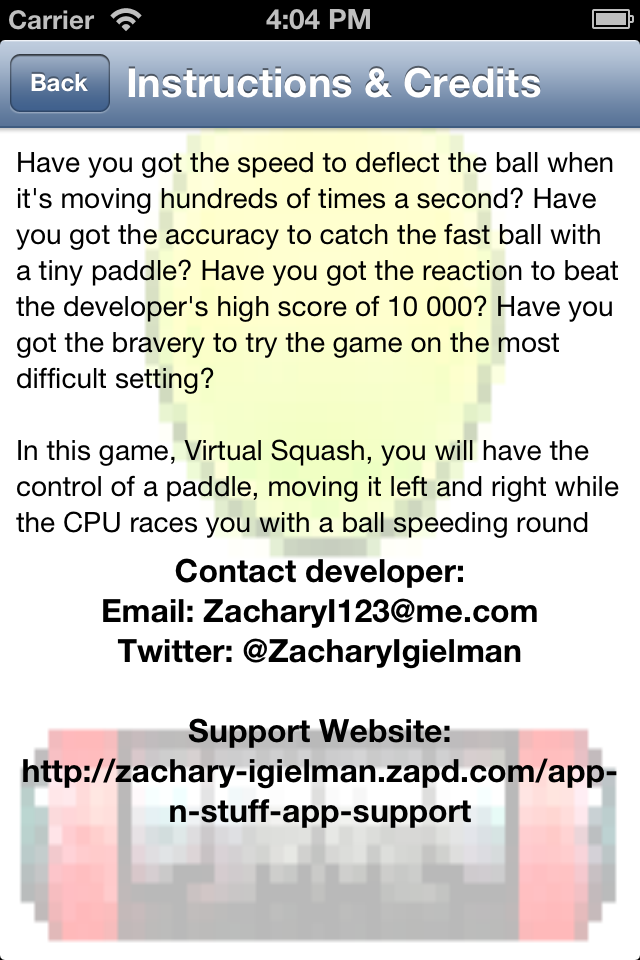 Screenshot Virtual Squash